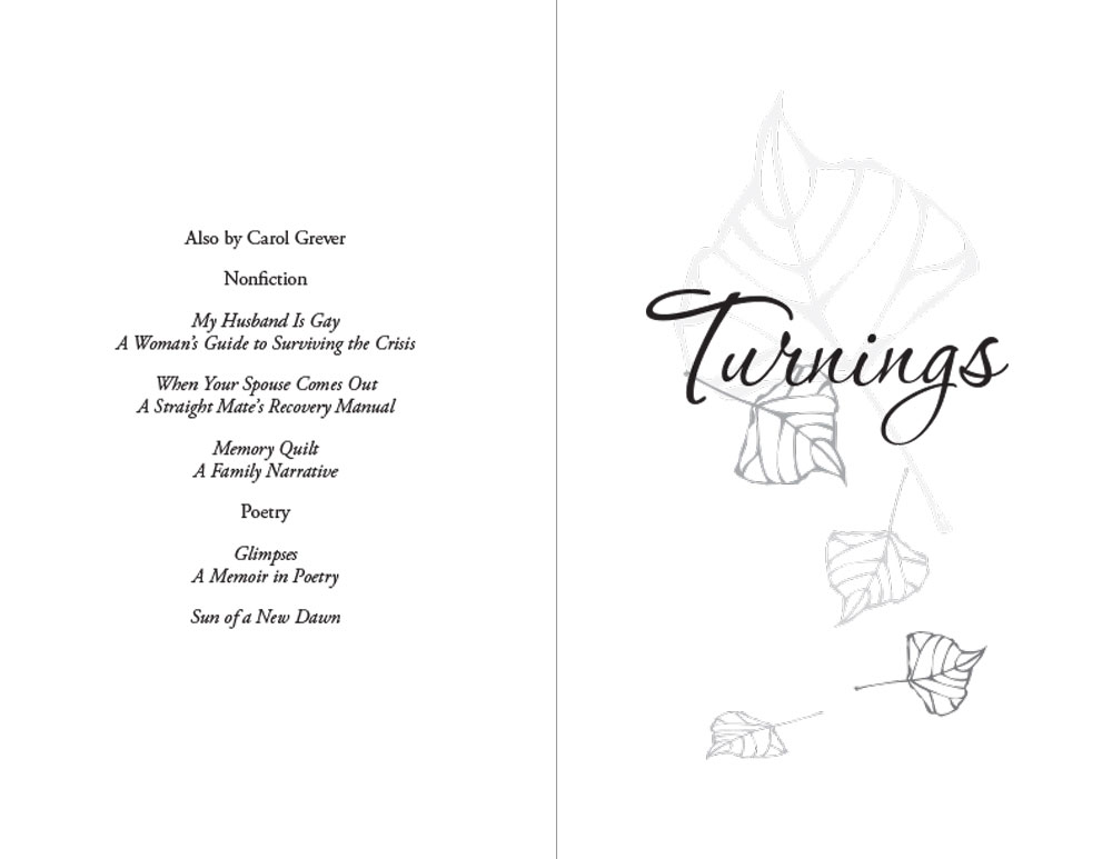 Turnings Half-title page