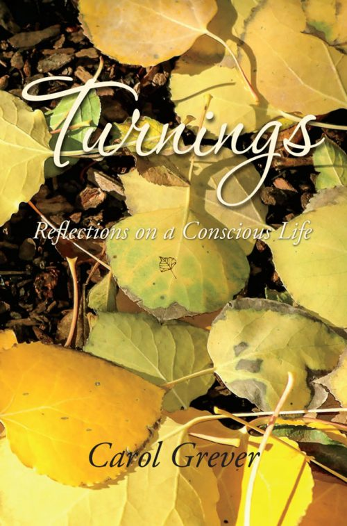 Turnings Cover